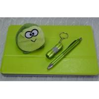 iPad-Geschenkset, grün
